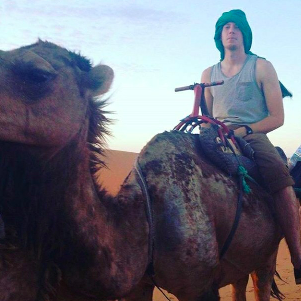 person riding a camel in the desert