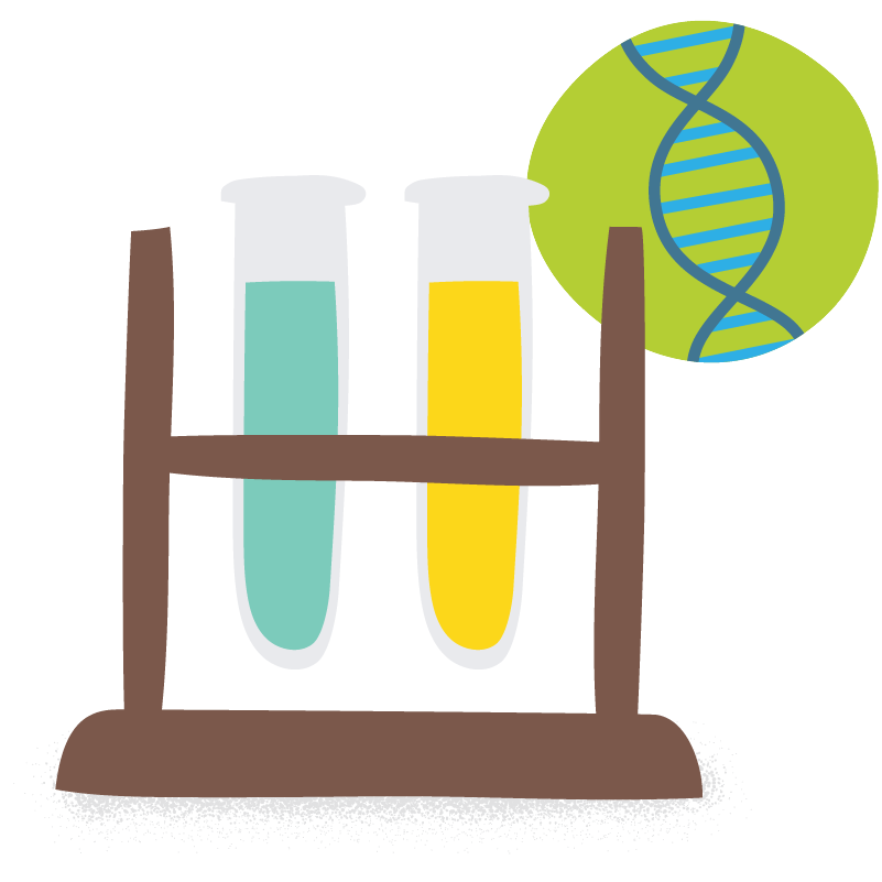 two test tubes beside a double helix DNA structure on green background