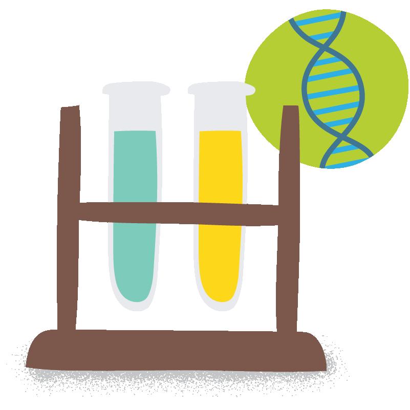 Test tubes testing DNA