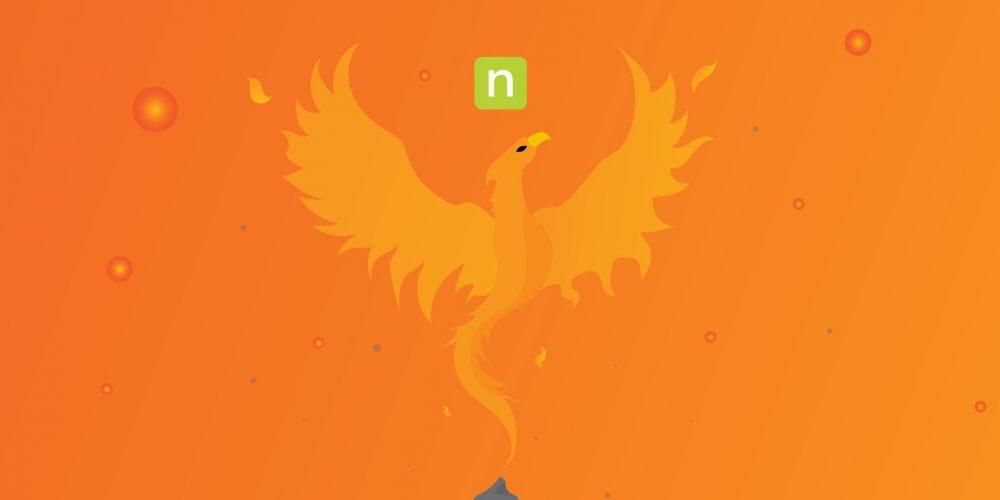Phoenix rising, depicting bold initiative