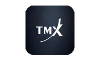 TMX Group logo