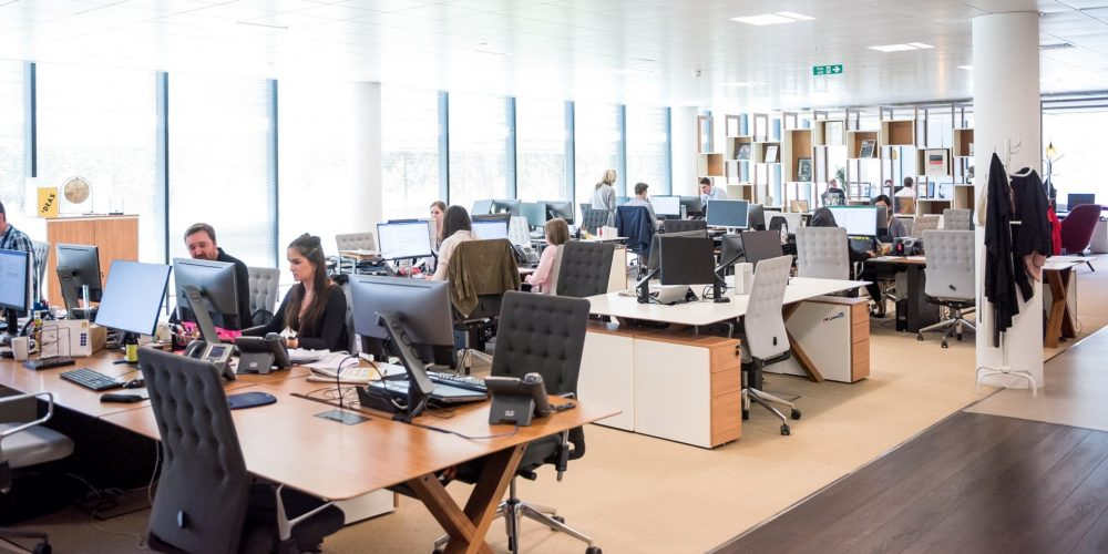 people working in a brightly lit office
