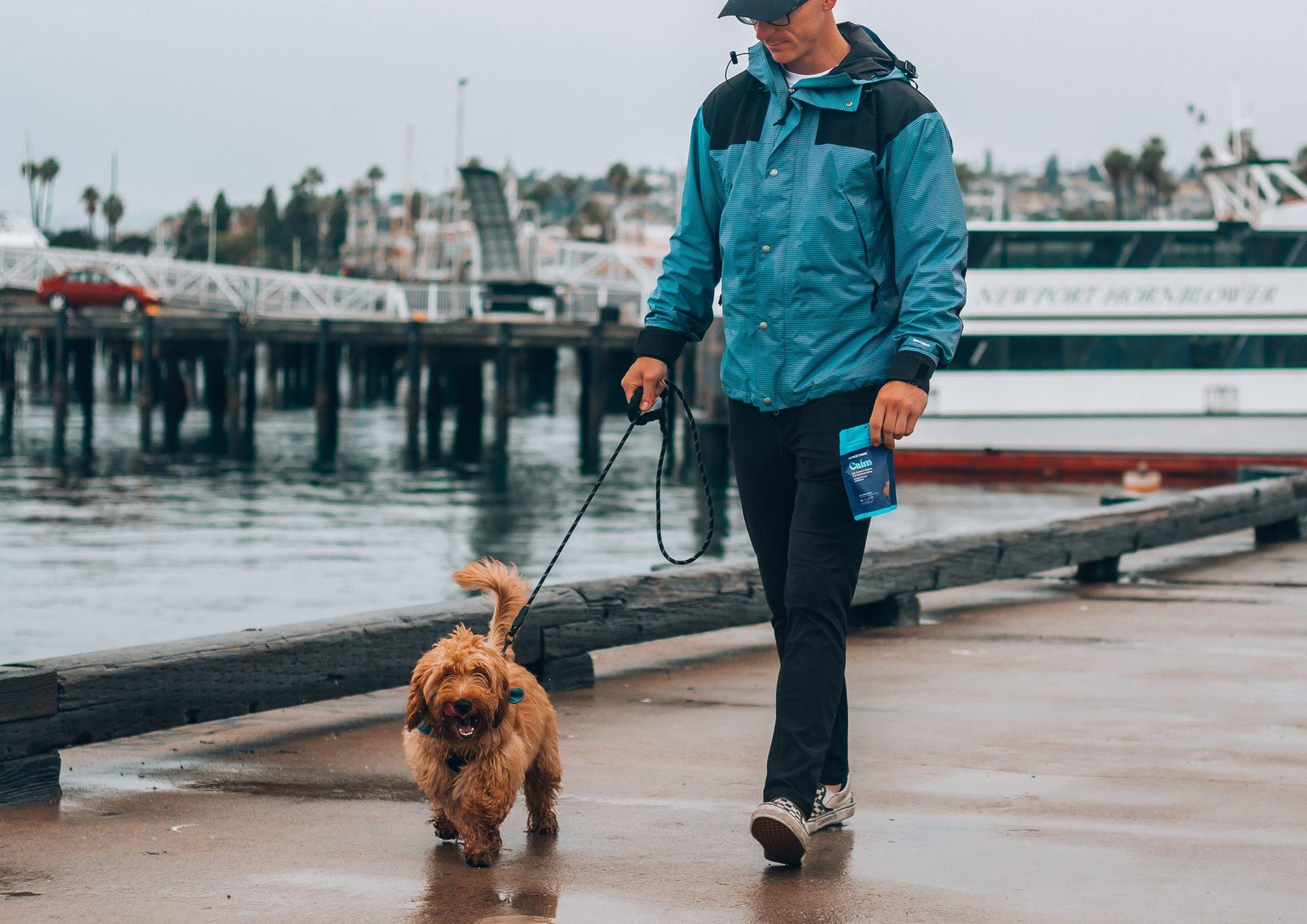 man walking puppy along the seaside